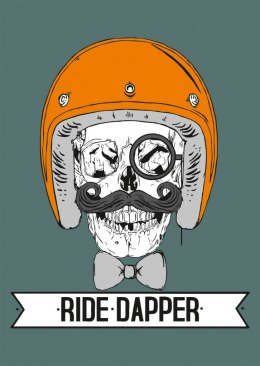 Plakat 79 Point Ride Dapper - A3